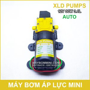 May Bom Ap Luc Mini 12V 30W XLD Tu Dong.jpg