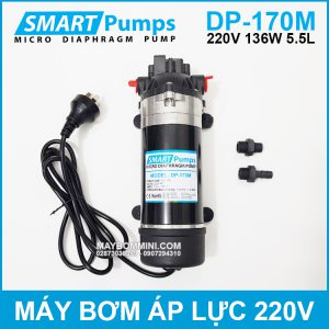 May Bom Ap Luc Mini Smartpumps 220V 135W 170M.jpg