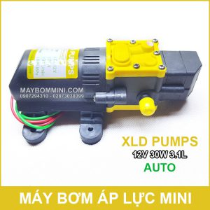 May Bom Ap Luc Mini Tu Dong 12v 30w Xld.jpg