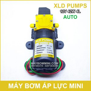 May Bom Mini 12V 42W 4L XLD Tu Dong.jpg