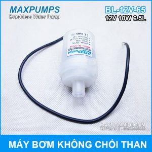 Bom Nuoc Chat Long 12v 650l Gia Re.jpg