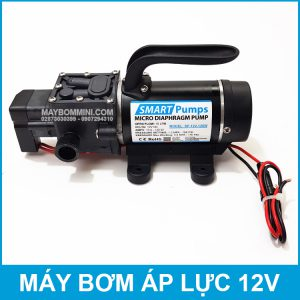 May Bom Mini 12V 120W 10L Smartpumps.jpg