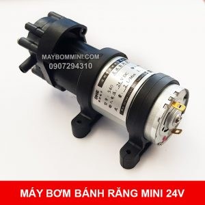 May Bom Mini Banh Rang 24v.jpg