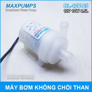 May Bom Nuoc Mini Khong Choi Than 12V 10W Maxpumps.jpg