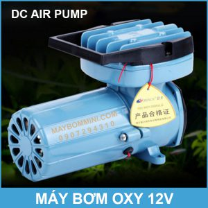May Bom Oxy DC Oxygen Air Pump.jpg